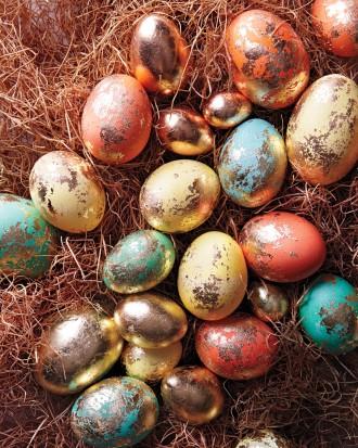 Eggs-in-nests-115-exp-1-mld110852_vert